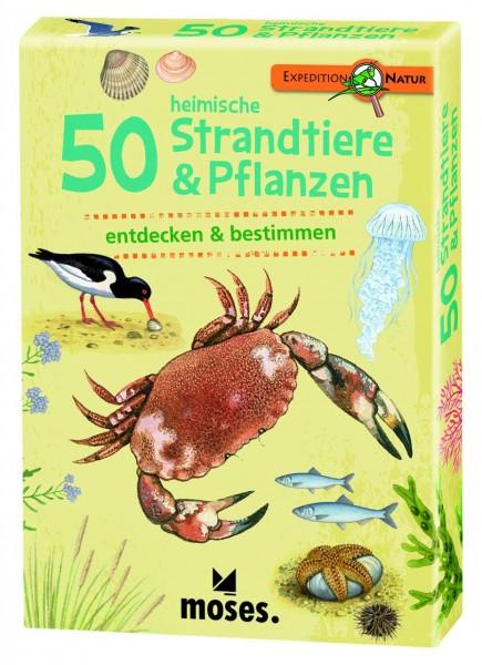 50 heimische Strandtiere und Pflanzen