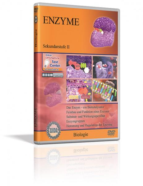 DVD - Enzyme