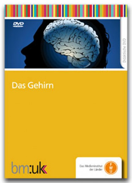 DVD - Das Gehirn
