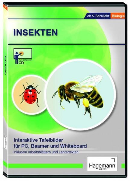Interaktives Tafelbild