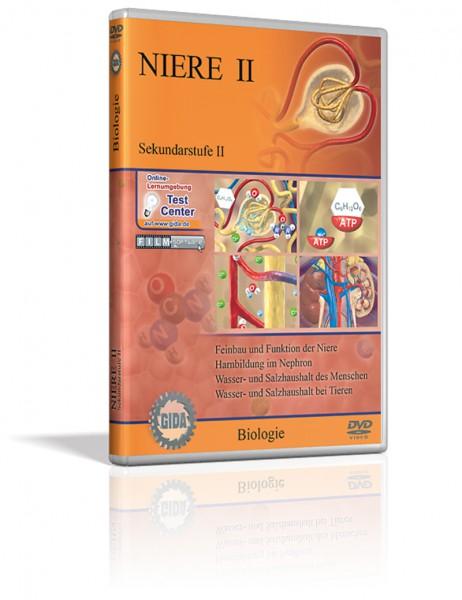 DVD - Niere II