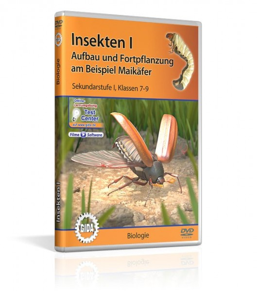 Lehrfilm Insekten