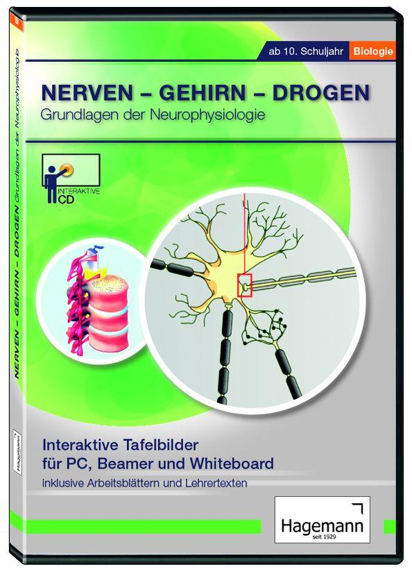 Interaktives Tafelbild: Nerven - Gehirn - Drogen - Einzellizenz ...