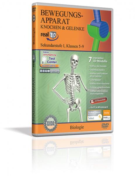 Real 3D Software - Bewegungsapparat, Knochen & Gelenke