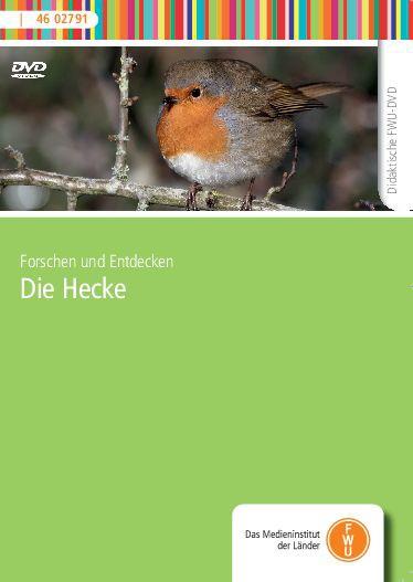 DVD - Die Hecke