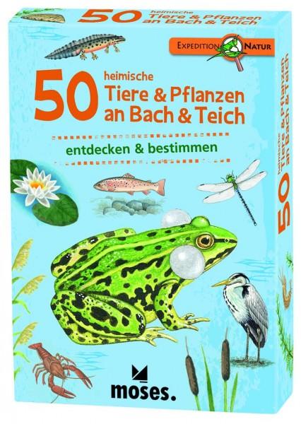 50 heimische Tiere & Pflanzen