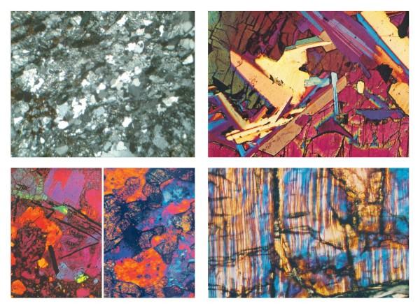 Gesteinsdünnschliffe Serie VI. Fossile und Meteorite 4 Präparate Format 30x45 cm, ohne Verpackung