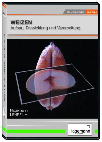 DVD - Weizen