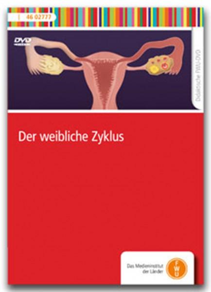 DVD - Der weibliche Zyklus