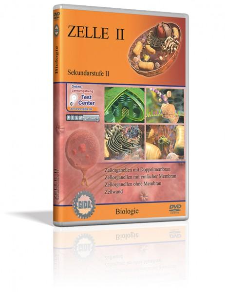 DVD - Zelle II