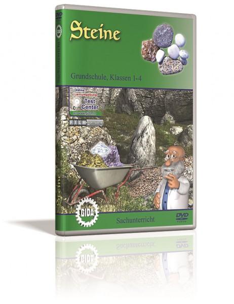 Steine - DVD