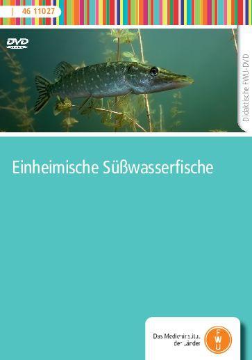 DVD - Einheimische Süßwasserfische