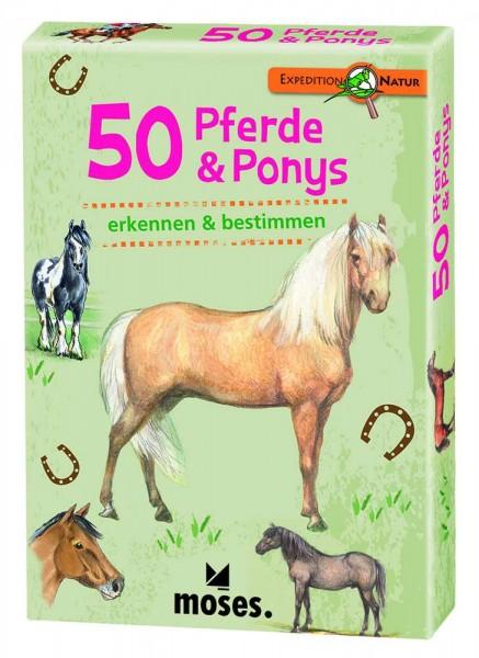 Bestimmungskarten 50 Pferde und Ponys