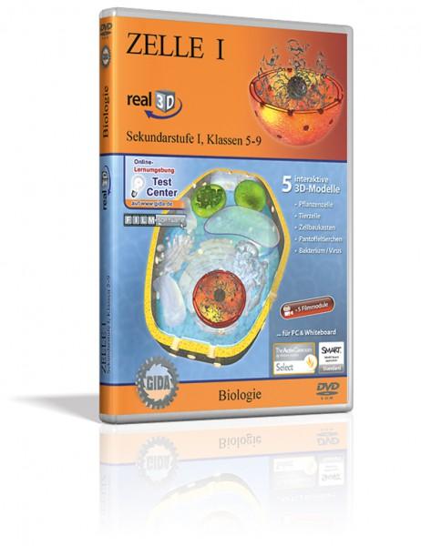 Real 3D Software - Zelle I