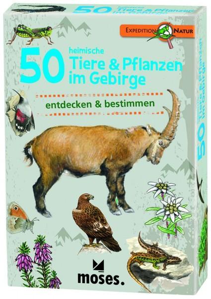 50 Tiere & Pfalzen im Gebirge