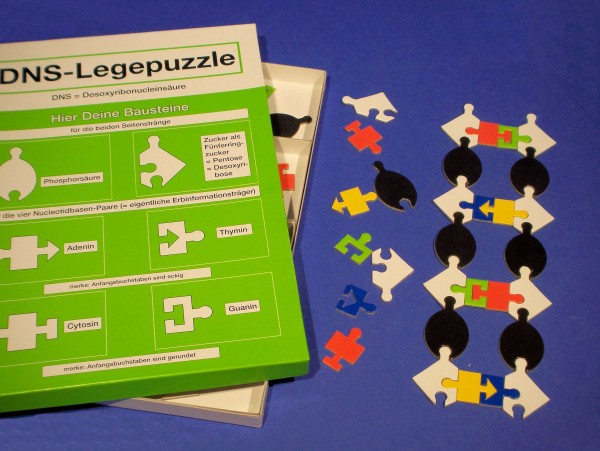 DNA Leggepuzzle