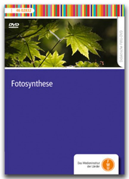 DVD - Fotosynthese