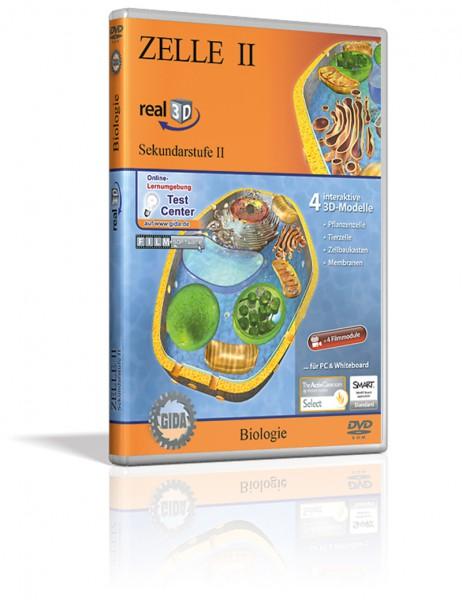 Real 3D Software - Zelle II