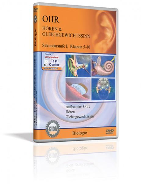 DVD - Ohr - Hören & Gleichgewichtssinn