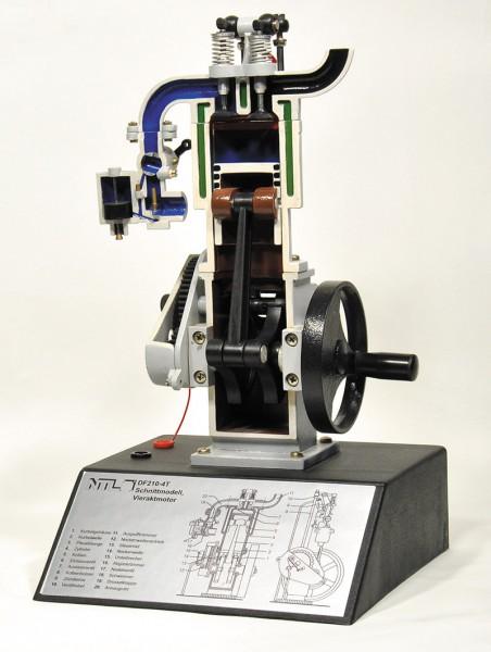 Viertaktmotor, Schnittmodell