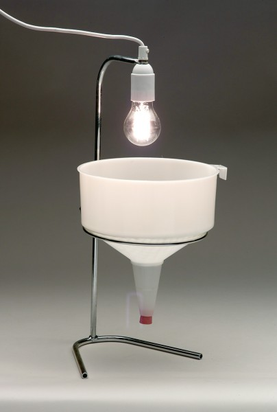 Ersatz-Kohlenfadenlampe