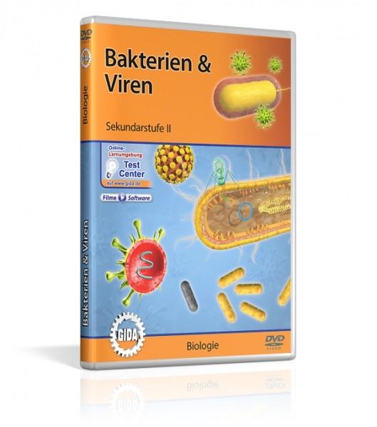 Bakterien & Viren